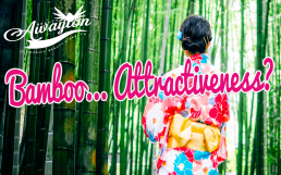 5 Super Easy Ways Bamboo Will Increase Your Attractiveness by Awayion Beauty