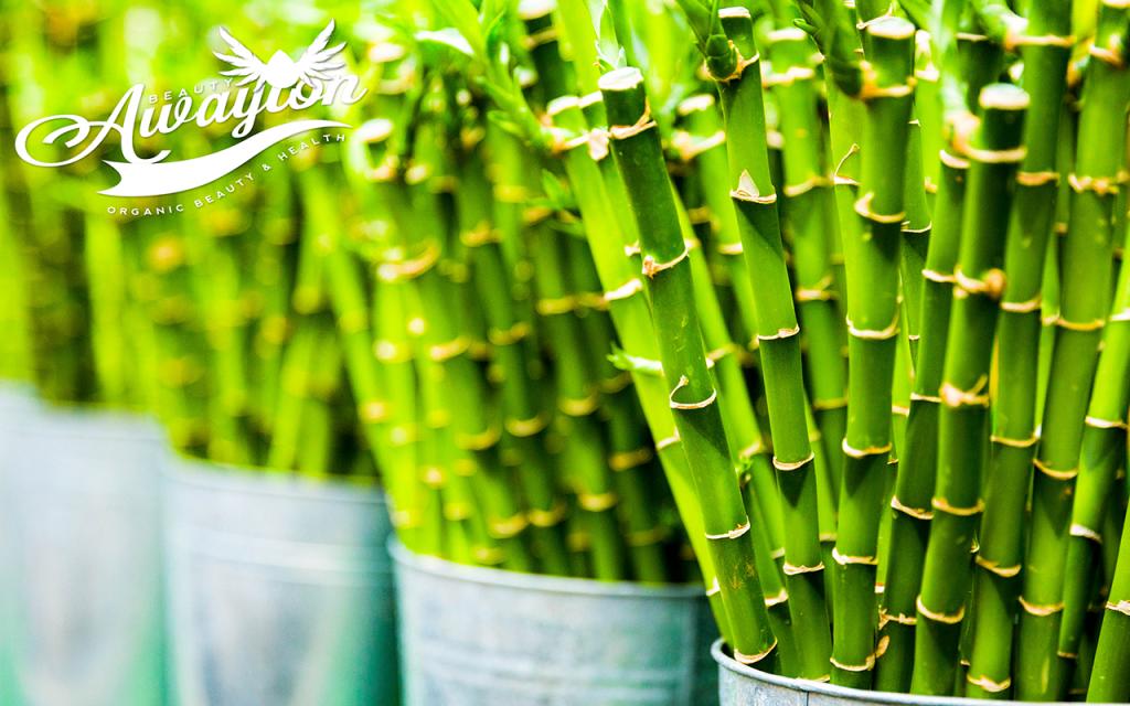 Fresh Bamboo by Awayion Beauty