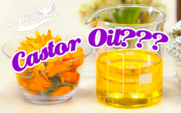 Who Doesn't Like Castor Oil by Awayion Beauty